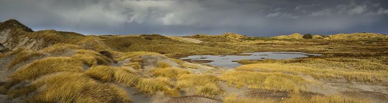 Naturfotobloggen